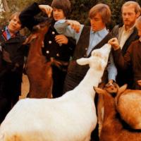 THE BEACH BOYS: 15 Facts About 'Pet Sounds' | Mental Floss