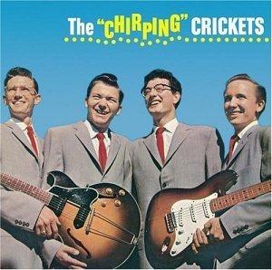 Chirping_Crickets