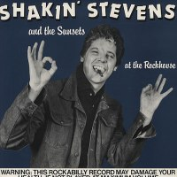 SHAKIN' STEVENS / Fire in the Blood: The Definitive Collection
